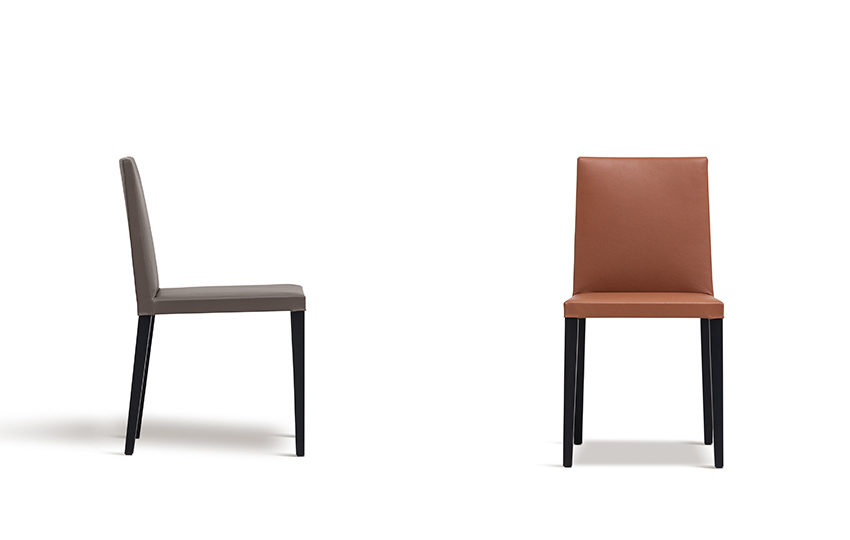 Origin / Dining Chairs / Camerich / Henri Living