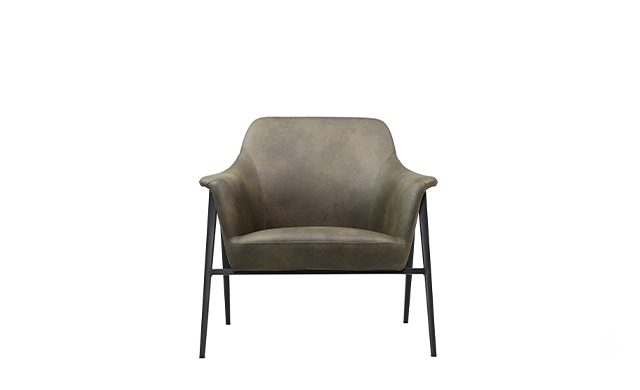 Roy - Lounge Chair / Point